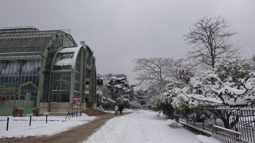 Le Jardin des Plantes sous la neige à la veille de l'ouverture de l'expo, le 7 février 2018