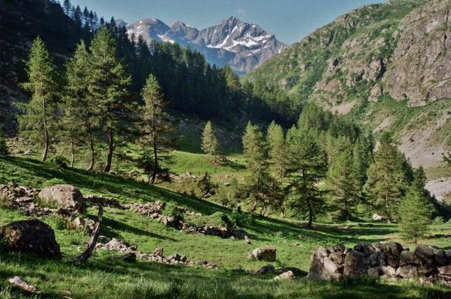Photo prise dans le Valgaudemar (Provence-Alpes-Côte d'Azur) par le GEOnaute : chantvoi