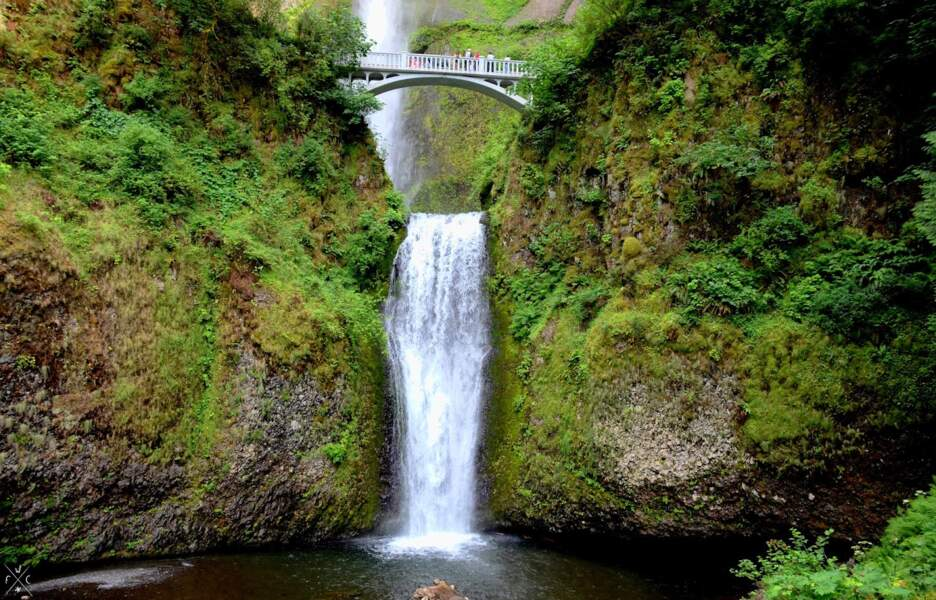 Etats-Unis - Oregon, le long de la Columbia River