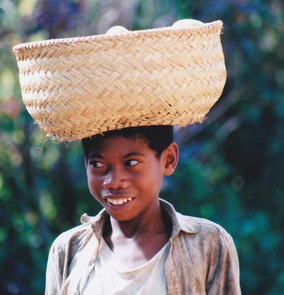 Photo prise à Madagascar par le GEOnaute : androl