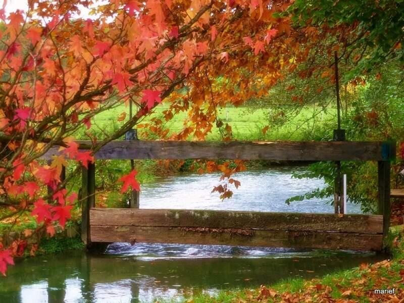 Balade dans le parc du Château de Vascœuil, dans l'Eure