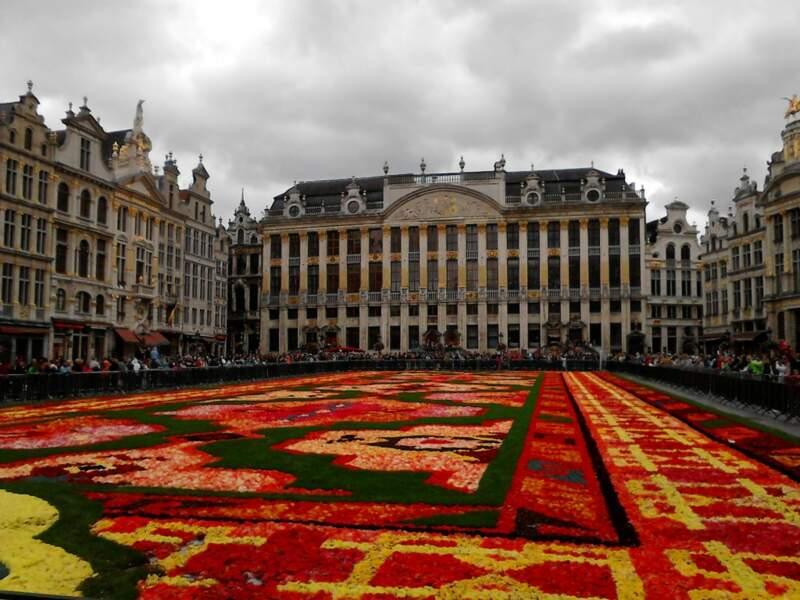 Belgique - Quand Bruxelles déroule son tapis de fleurs