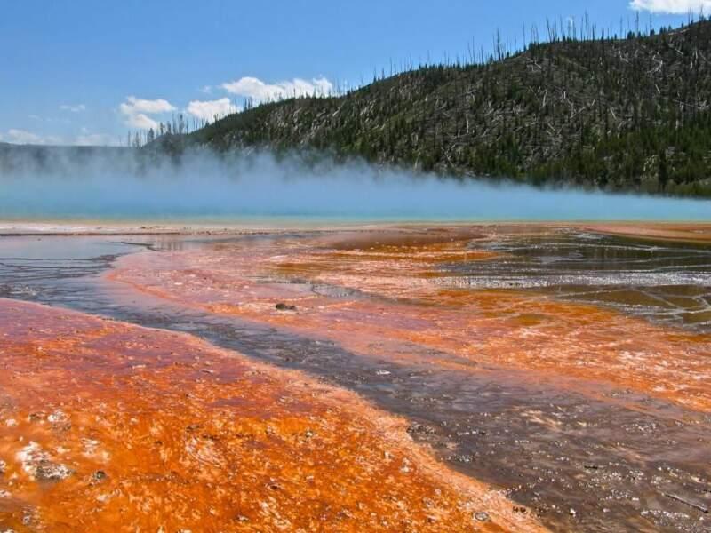 Photo prise dans le Parc national de Yellowstone (Etats-Unis), par sderain