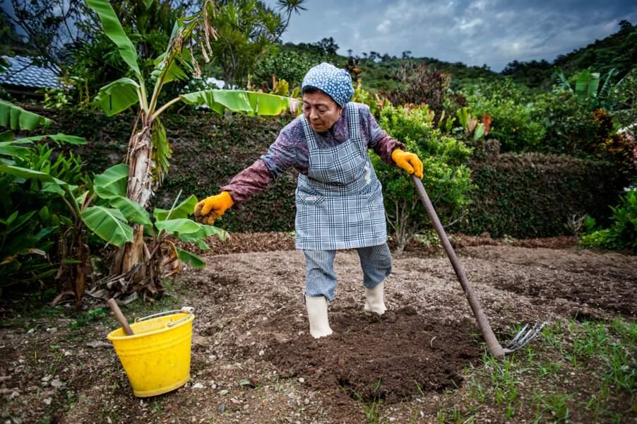 Les secrets de santé des centenaires d'Okinawa