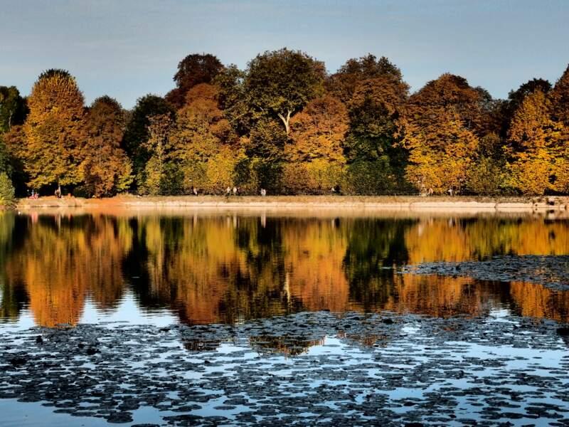 Couleurs d'automne se reflétant dans l'eau