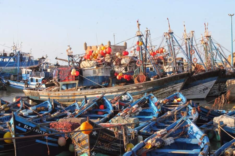 Maroc - Quelques heures à Essaouira