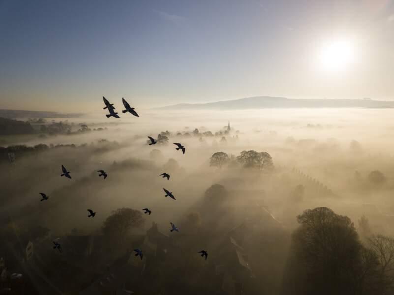 De la brume à l'horizon