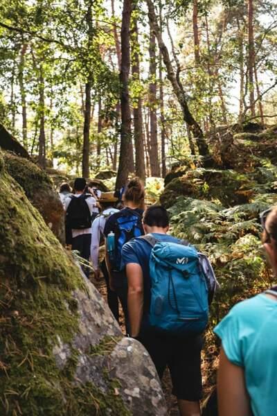 18 km de balade à travers la forêt