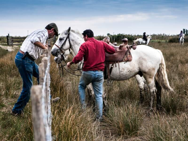 Les gardians sont les cow-boys du plat pays camarguais