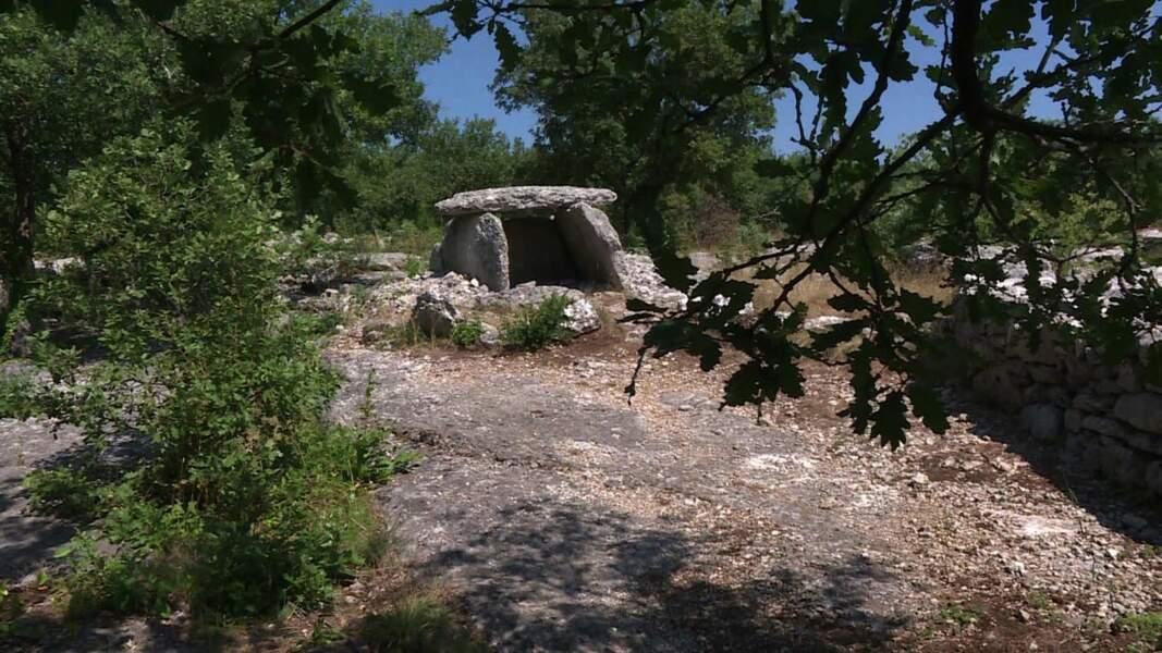 VIDÉO - L'Ardèche, l'autre pays des dolmens