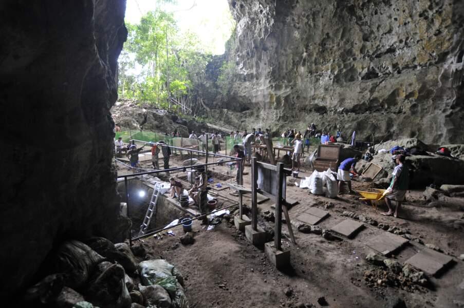 Une nouvelle espèce humaine identifiée aux Philippines