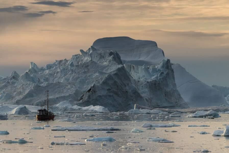 La nursery des icebergs