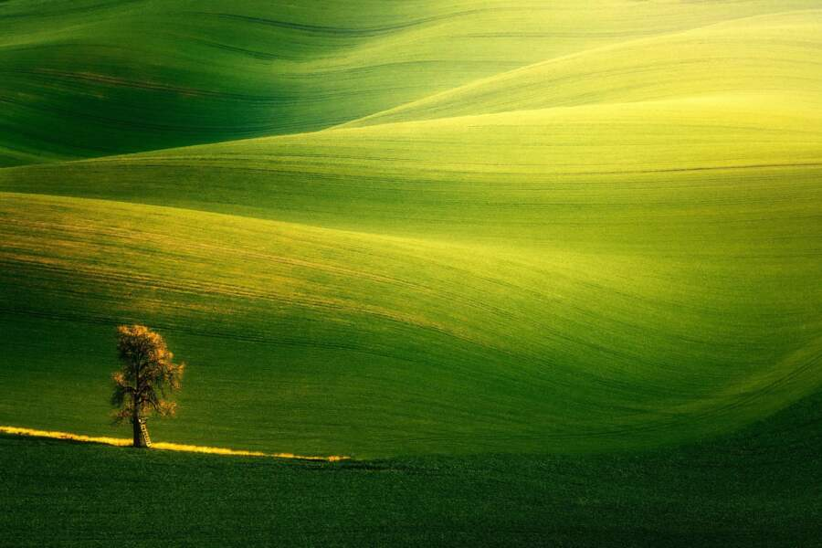 Seul dans la lumière, Kyjov, République tchèque