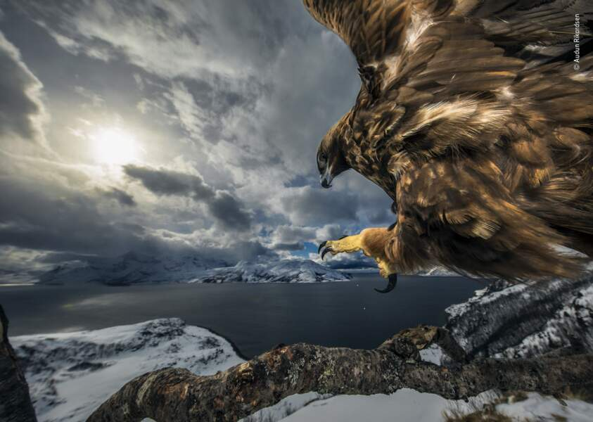 Le pays des aigles