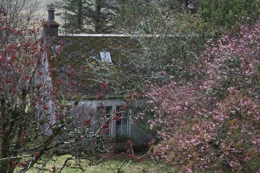 Au détour d'un cottage