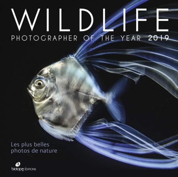 Les plus belles photos du Wildlife Photographer of the Year 2019