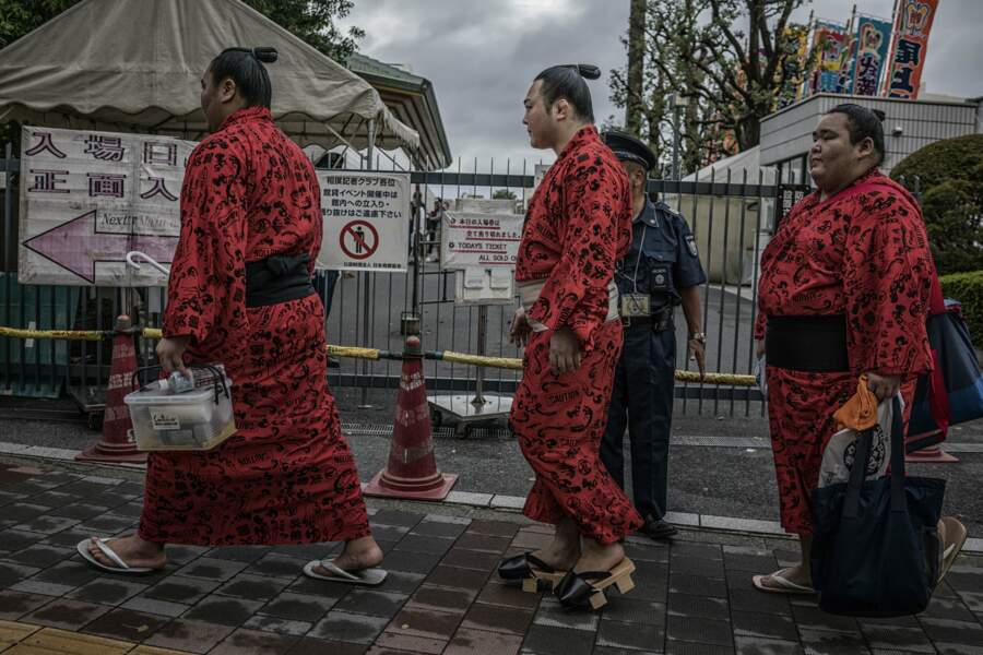 Sumotoris : héros du Japon