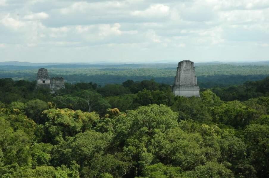 Ruines mayas de Tikal, Guatemala : base rebelle sur la lune Yavin 4 (épisode IV)