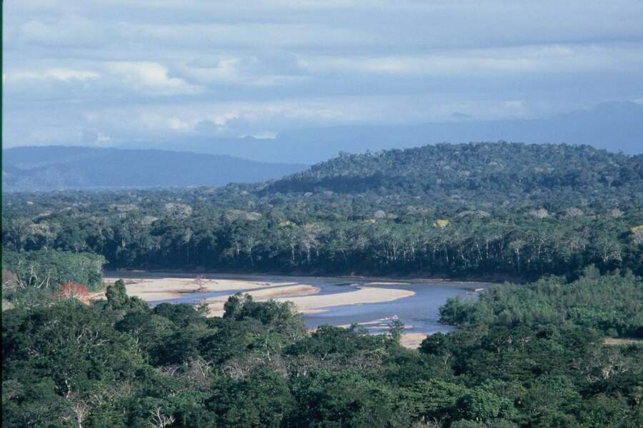 Paysage d'Amazonie