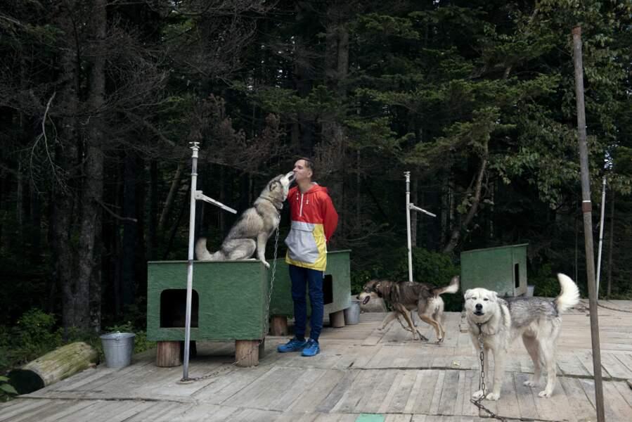 Un havre pour chiens de traîneau