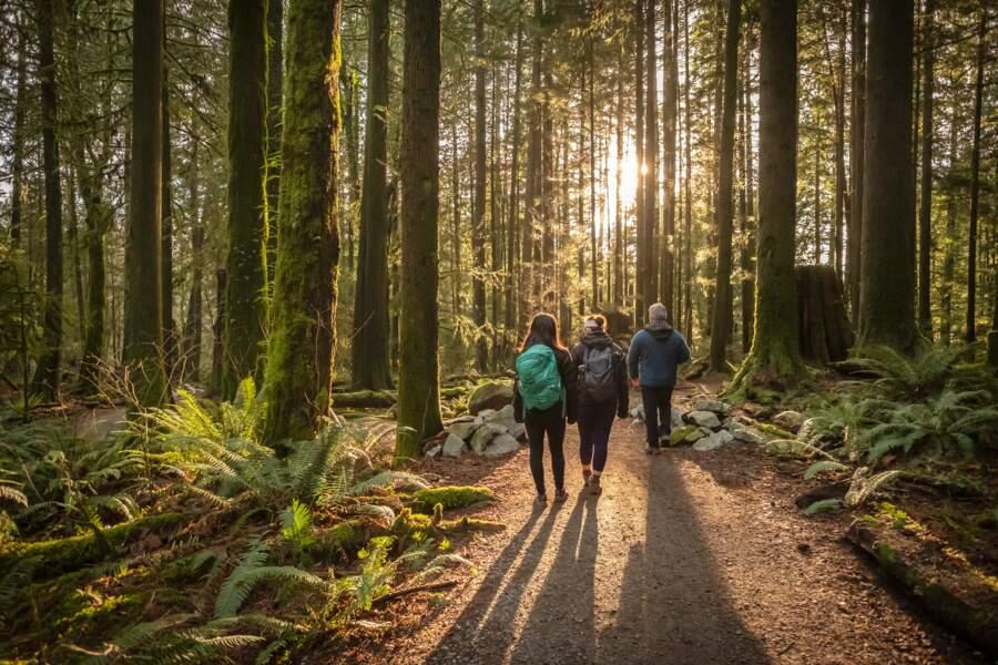 Des balades nature à moins de 100 km de chez soi à découvrir grâce à Helloways