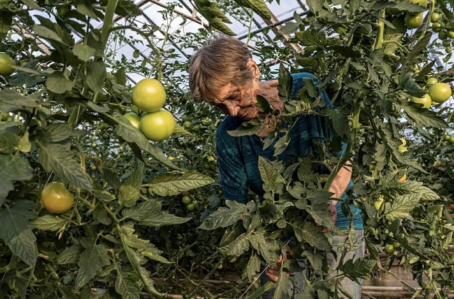 La production agricole augmente