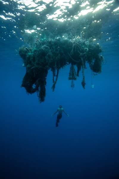 Des milliers de déchets rencontrés
