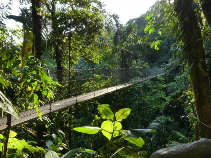Région de La Fortuna de San Carlos : une série de ponts suspendus