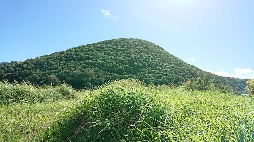 Piton Mont-Vert (La Réunion)