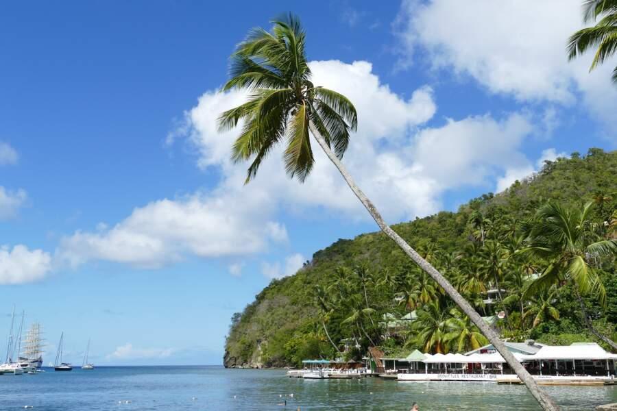 Sainte-Lucie, aux Antilles