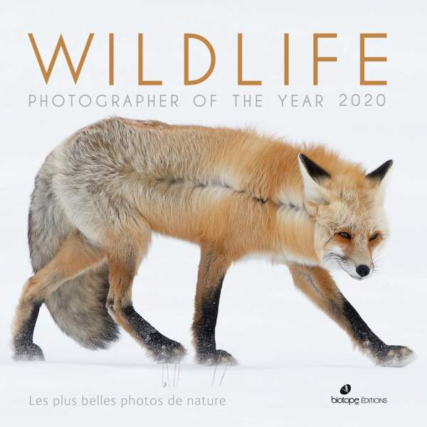 Wildlife Photographer of the Year 2020, le must de la photo animalière