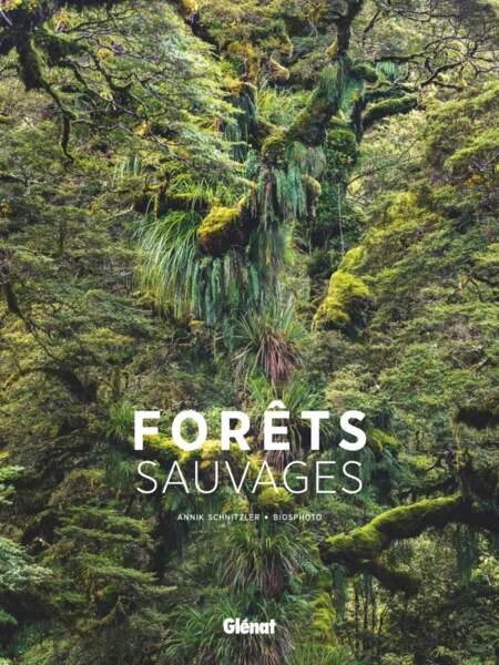 Forêts sauvages, au coeur des forêts du monde