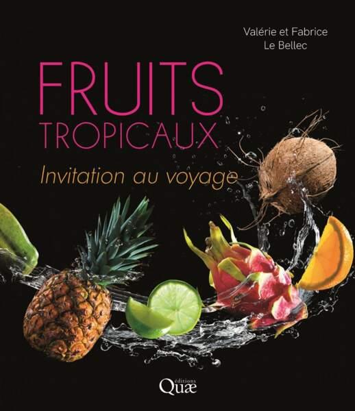 Fruits tropicaux, invitation au voyage
