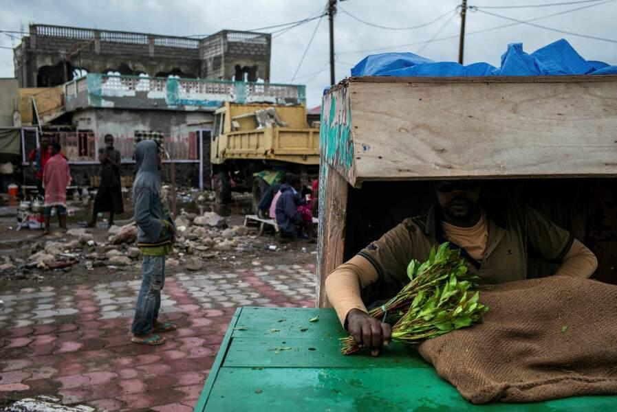 Vendeur de khat à Tadjourah