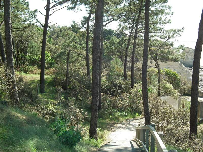 Le parc de l'estuaire, Saint-Georges-de-Didonne