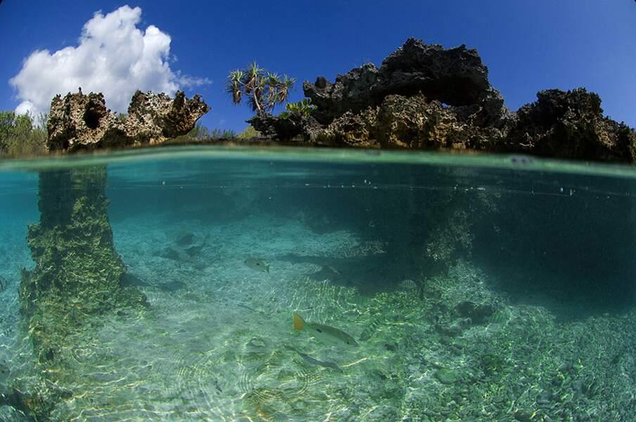 Les petits îlots du lagon semblent perchés sur de fines échasses.