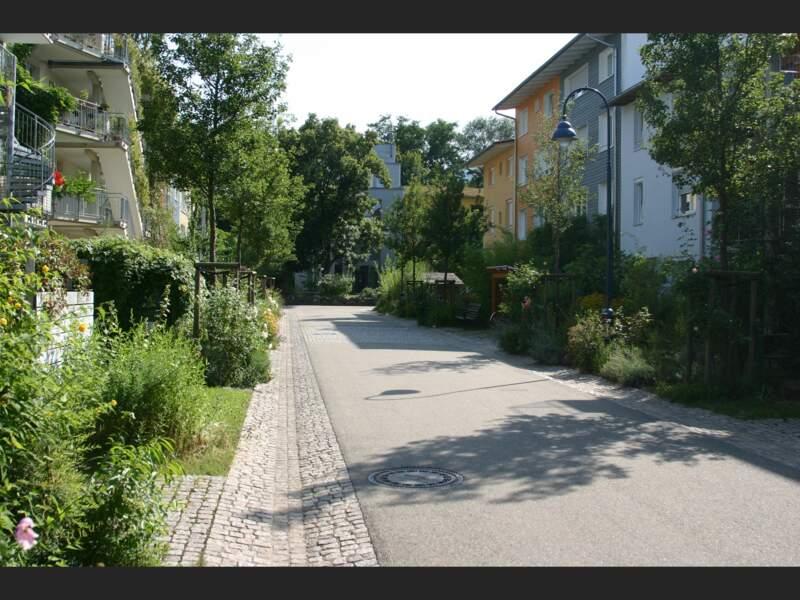 Rues vertes du quartier écolo Vauban à Fribourg-en-Brisgau, en Allemagne