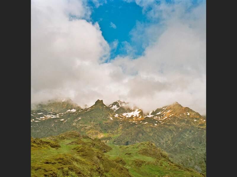Biodiversité en Ariège, dans les Pyrénées françaises