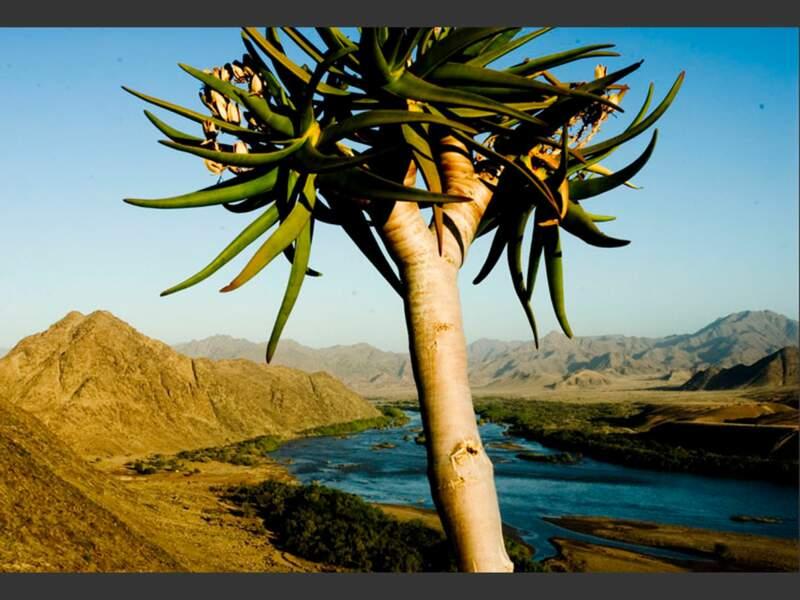 Le fleuve Orange, une frontière naturelle entre Afrique du Sud et Namibie