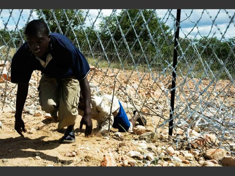 Des immigrants zimbabwéens passent clandestinement la frontière, près de Musina (Afrique du Sud)