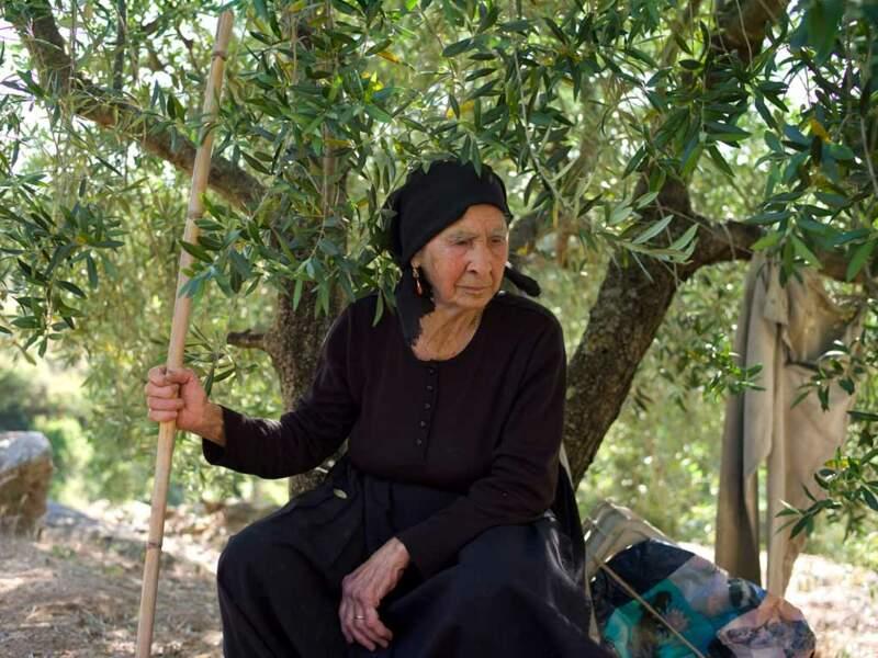 Angela, 89 ans, se repose parmi ses oliviers, près de Villagrande, en Sardaigne