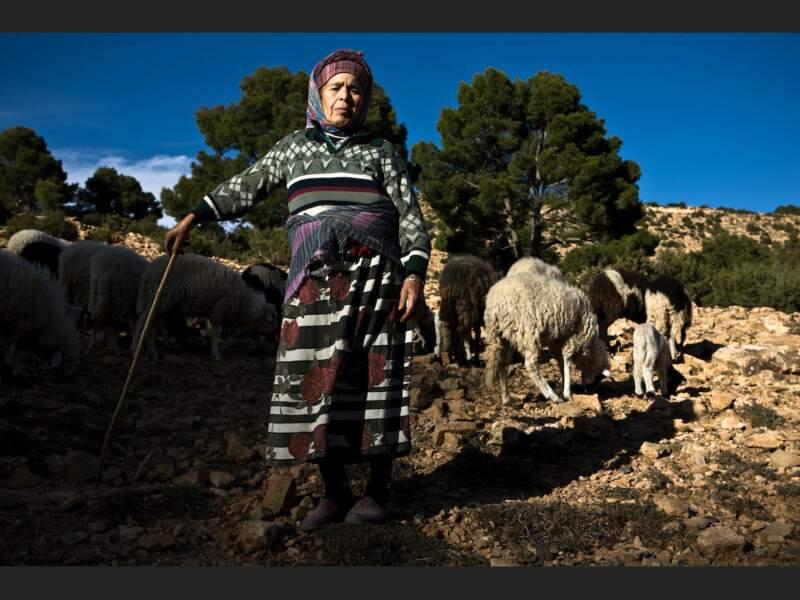 Élevage du bétail dans un village berbère du Haut-Atlas, au Maroc