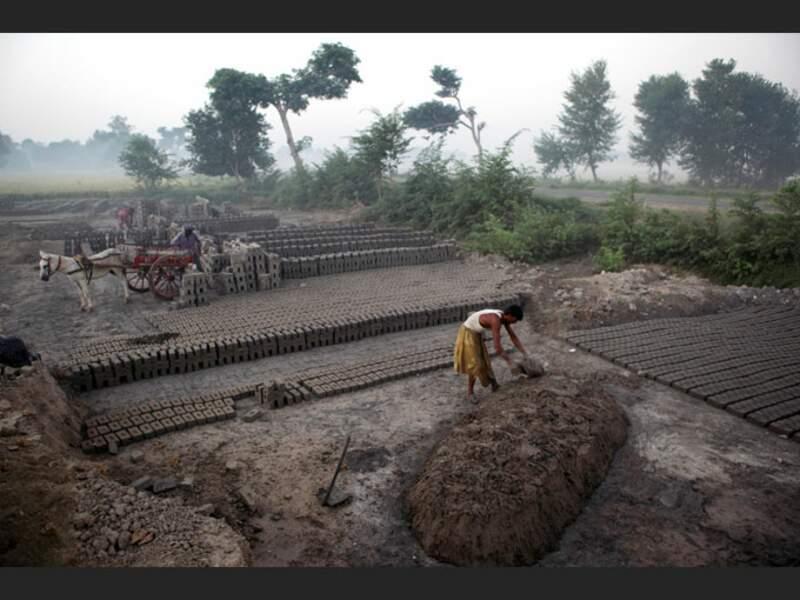 Les briques d'argile entrent encore dans la construction de la plupart des maisons pakistanaises, dans la vallée de l'Indus, au Pakistan