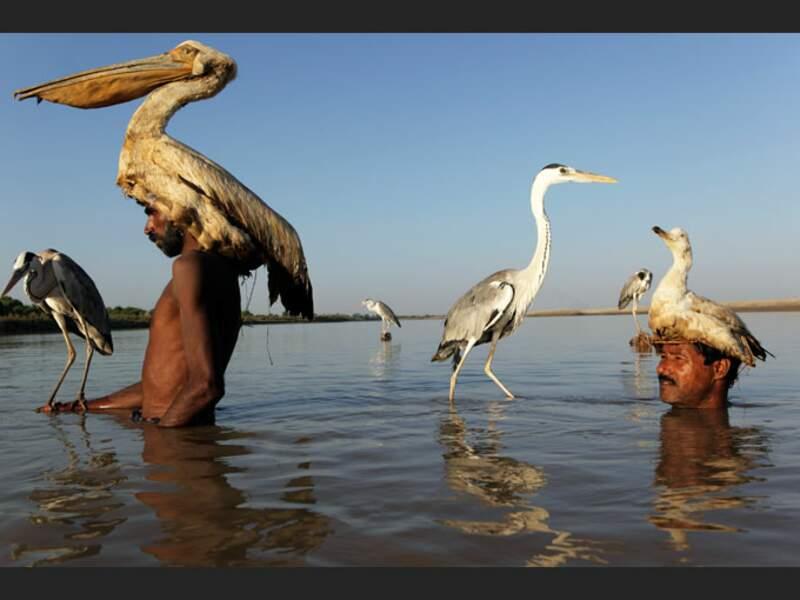Les Mohana, descendants des fondateurs de la cité de Mohenjo-Daro, au Pakistan