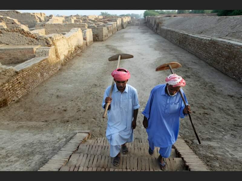 Ouvriers sur le site de Mohenjo-Daro, au Pakistan