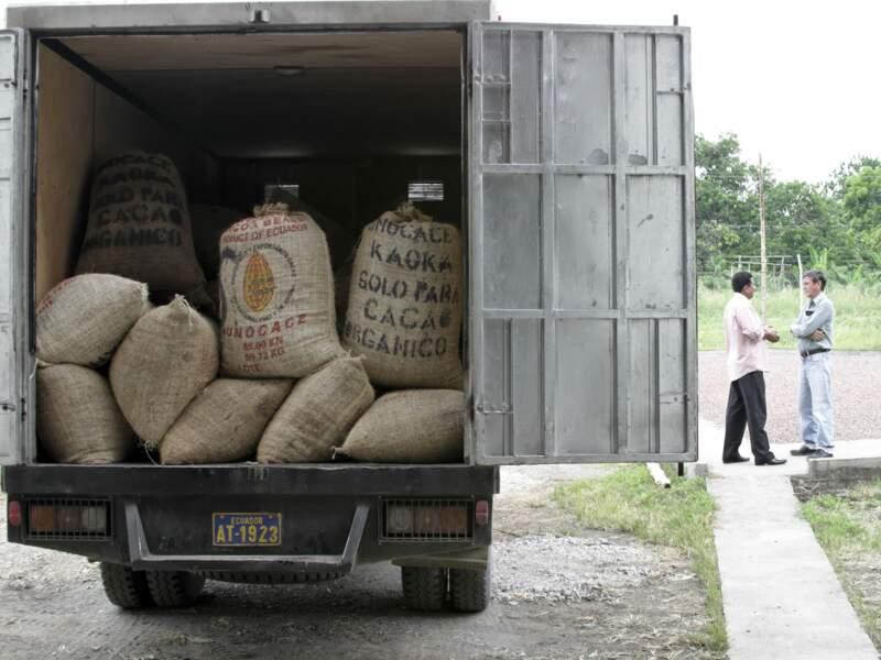 Des camions sont chargés de sacs de fèves.