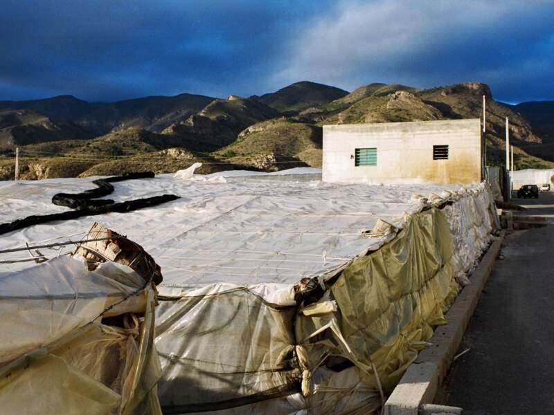 Des terrassements de serres sur les versants de la Sierra de Gador.