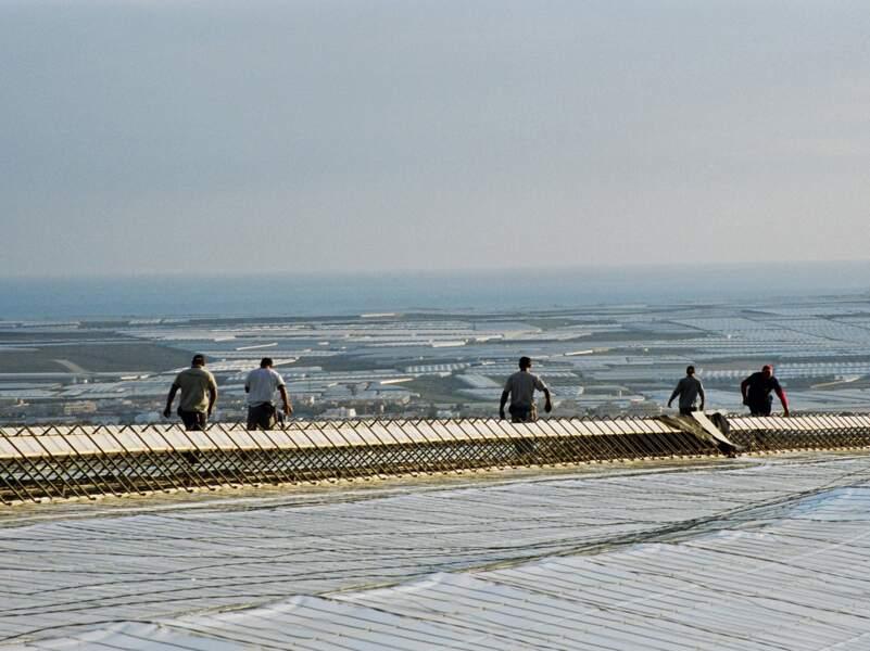Depuis l'an 2000 les espagnols recrutent une main d'œuvre en provenance des pays de l'Est. Certains sont à présent patrons.