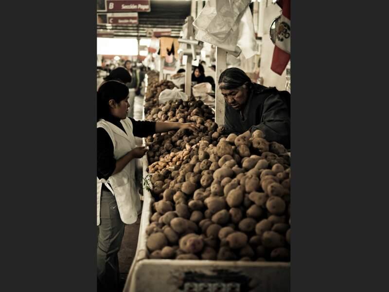 Cette maraîchère propose une incroyable variété de pommes de terre sur le marché de Cuzco (Pérou).