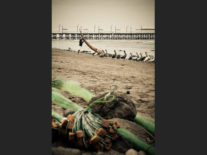 Un pêcheur met à l'eau son « caballo de totora », une embarcation faite de joncs serrés, sur la plage de Huanchaco (Pérou).